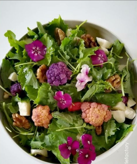 Cuisine- Salade